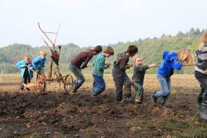 Solidarische Landwirtschaft: Wünschst du dir einen Bauernhof?